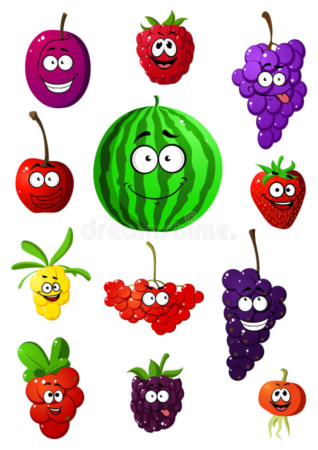 Colorful fruits and berries characters royalty free illustration