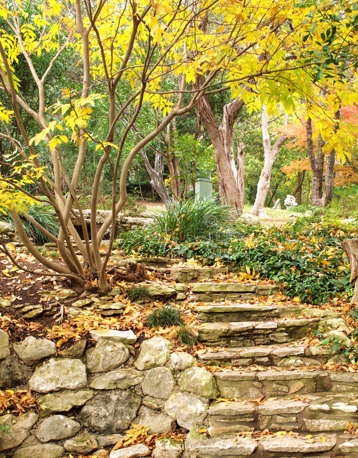 Colorful garden in Austin stock photo