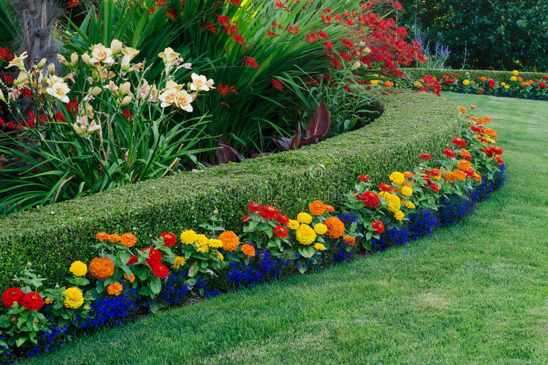 Download Colorful Garden stock image. Image of boxwood, lawn, design - 32183979