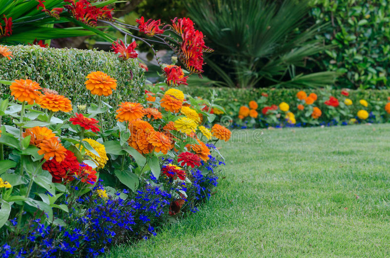 Download Colorful garden detail stock image. Image of lush, beautiful - 32184079