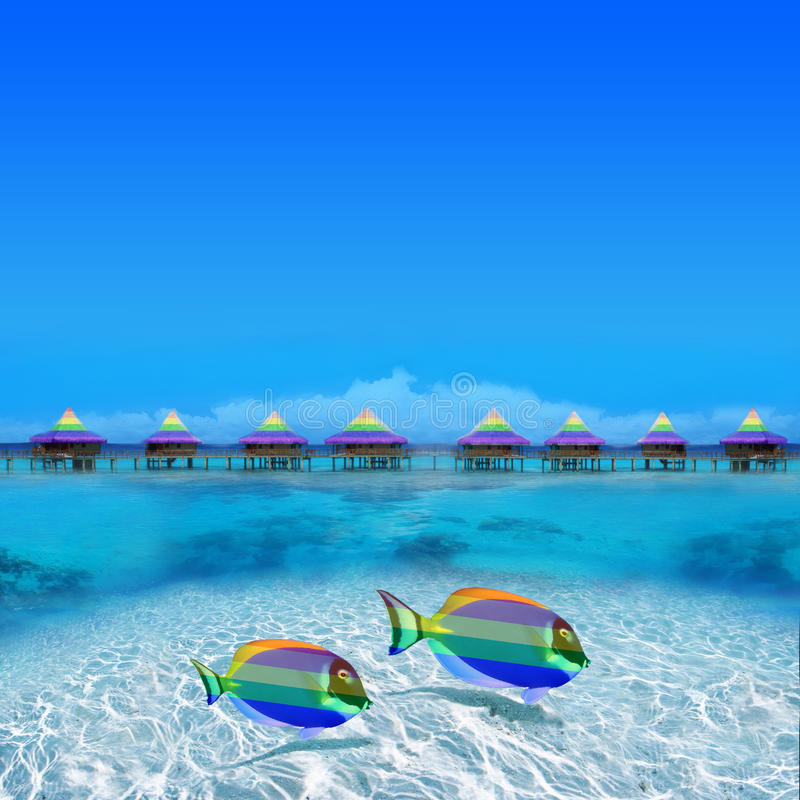 Download Colorful Gay Fishes stock image. Image of different, bungalow - 17202549