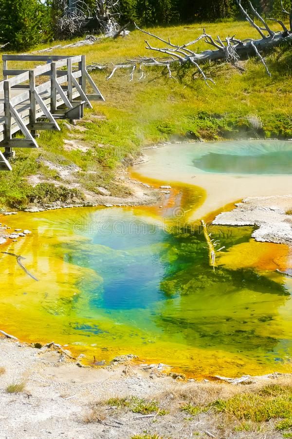 Colorful geothermal puddles Yellowstone Park. In a sunny day stock photography