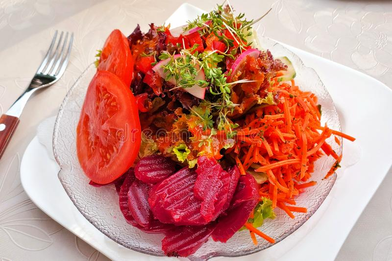 Colorful German summer salad with beets, carrots, lettuce, tomato, radish and herbs stock photos