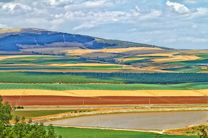 Colorful Golan Heights royalty free stock images