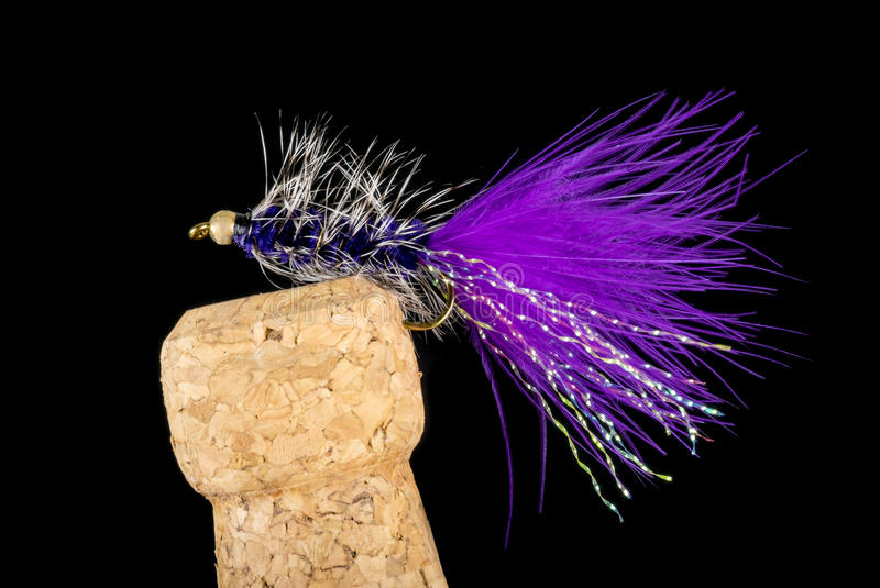 Colorful Hand Tied Fishing Flies Displayed on Champagne Cork 7. Colorful Hand Tied Fishing Flies Displayed on Champagne Cork Isolated on Black 7 royalty free stock photos