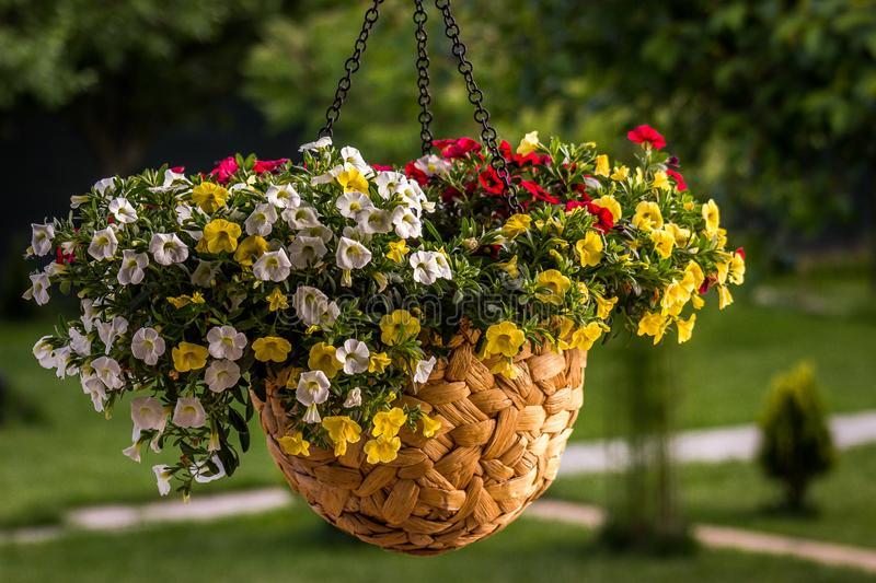 Colorful hanging flower pot/vase. Welcome home. stock photo