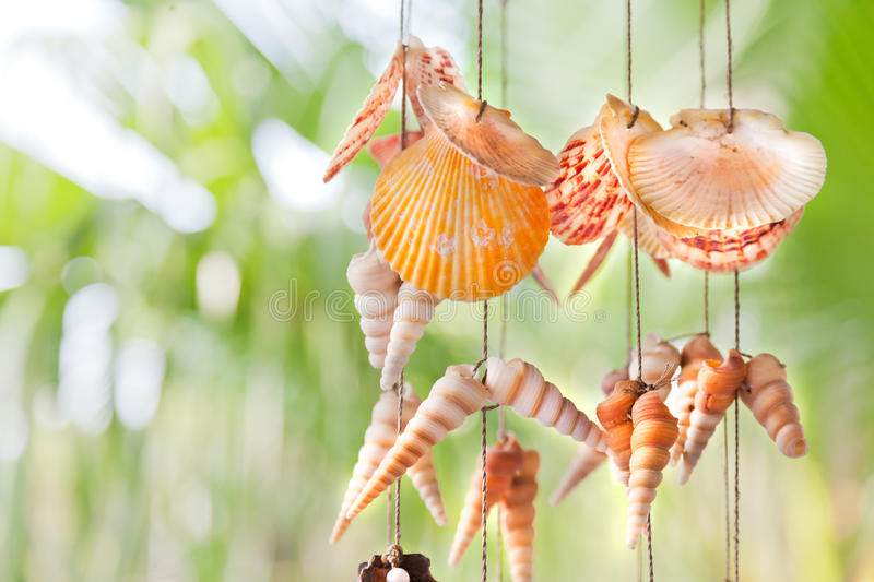 Download Colorful hanging shells stock photo. Image of decoration - 33198244
