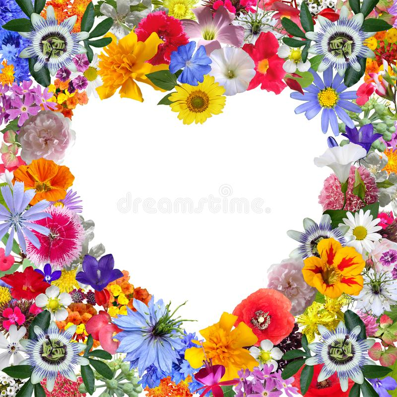 Colorful Heart Frame made with Garden Flowers royalty free stock photo