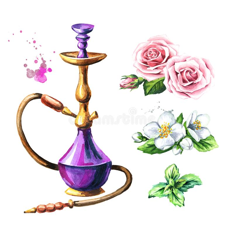 Colorful hookah with rose, mint and jasmine flower. Watercolor hand drawn illustration, isolated on white background vector illustration