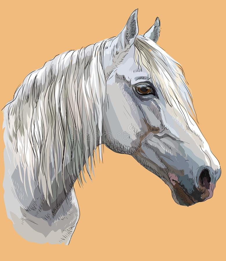 Free Colorful Horse Portrait-6 Royalty Free Stock Image - 112303876