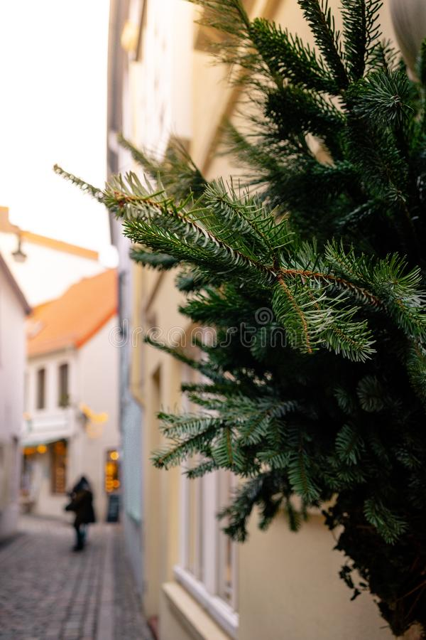 Colorful houses and narrow streets with Christmas decoration and lights in historic Schnoorviertel in Bremen. Christmas trees, wooden table, candlesticks royalty free stock images