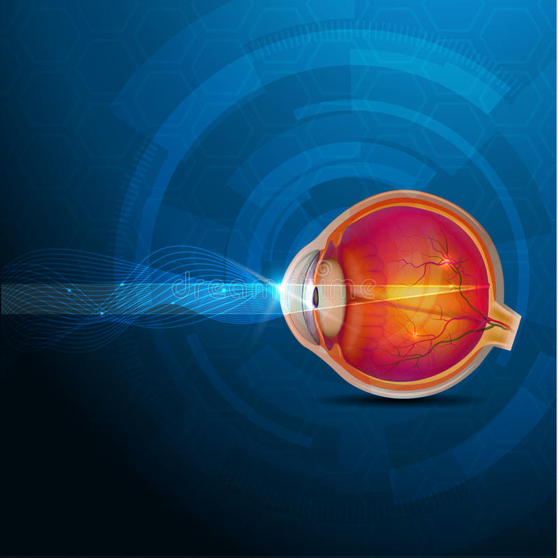 Colorful human eye, normal sight abstract design stock illustration
