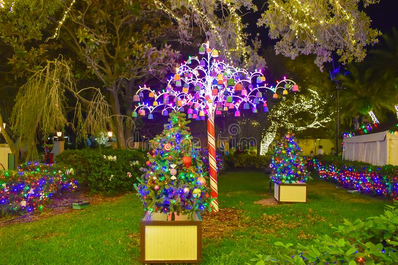 Colorful and illuminated Christmas trees at Busch Gardens 2 royalty free stock photos