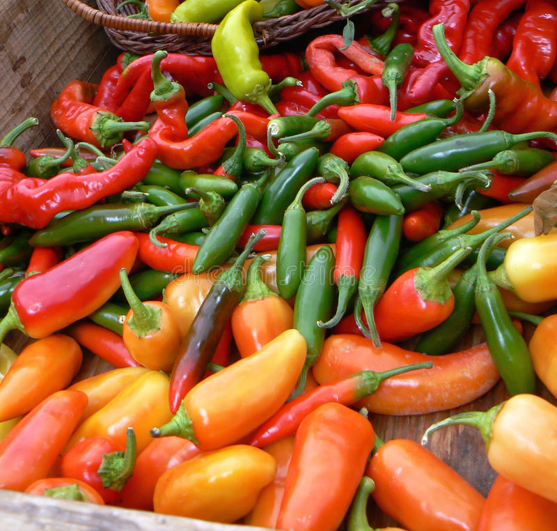 Colorful Jalapenos spread on a table royalty free stock images