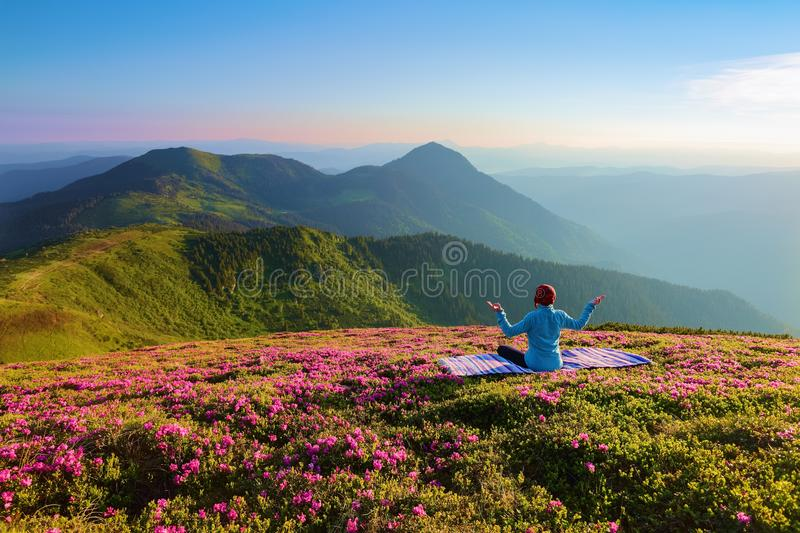 Colorful karemat. The yoga girl in the lotus pose. The lawn with the rhododendron flowers. High mountains. Magical forest. Summer. royalty free stock images