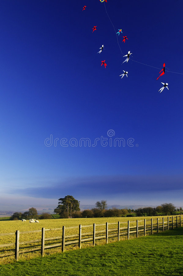 Colorful kites in country stock image
