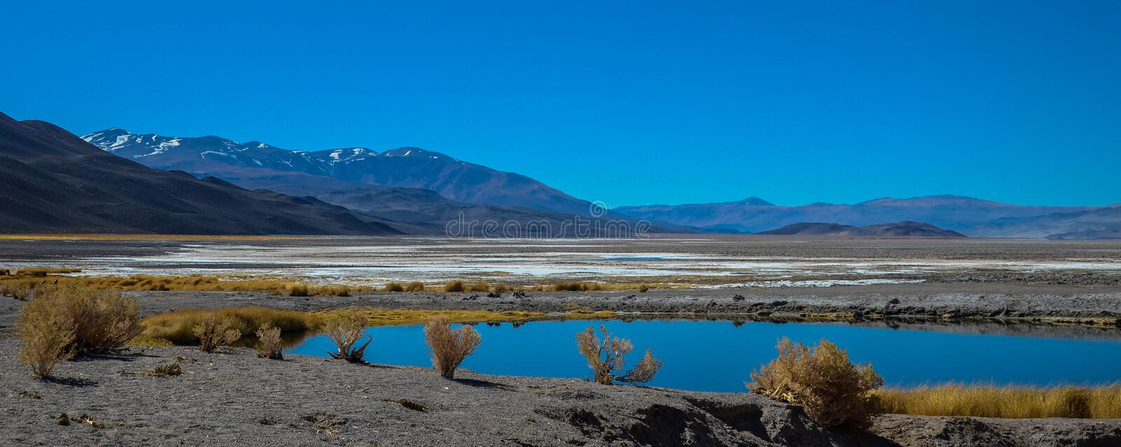 Colorful lagoon, salt peats, and the Andes mountains of Catamarca, Argentina stock photo