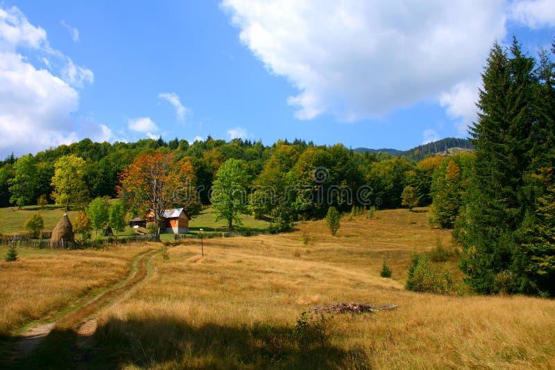 Colorful landscape. Colorful rural landscape in autumn, Bihorului Mountains, Romania stock photography