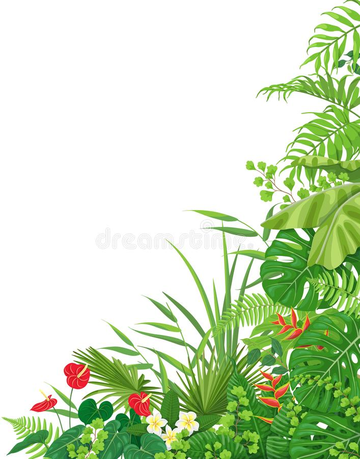 Side Corner Border with Tropical Plants royalty free illustration