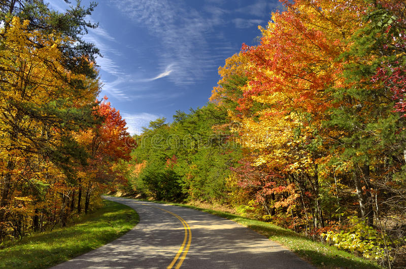 Colorful Leaves in Great Smoky Mountains, TN, USA stock image