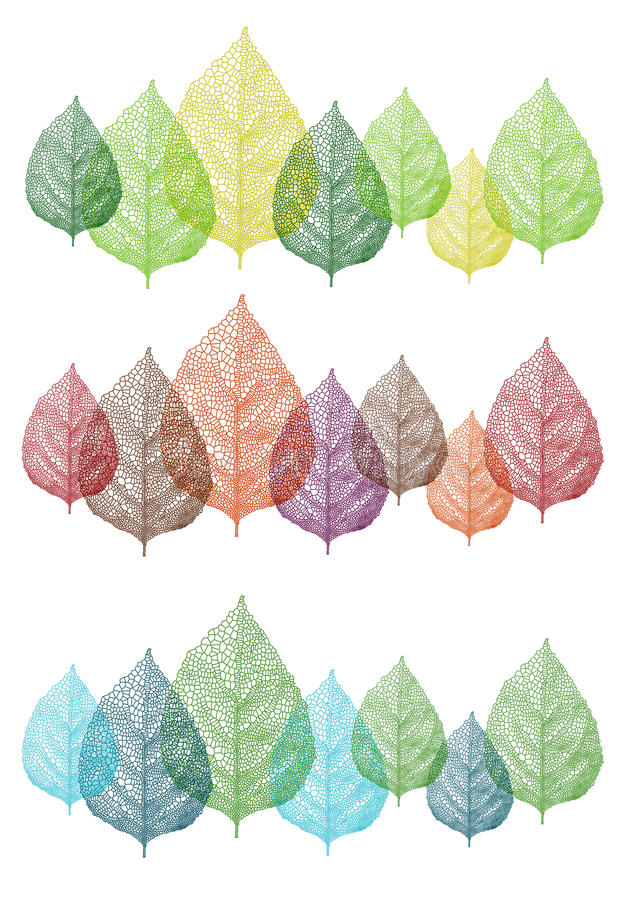 Colorful leaves, vector set royalty free illustration