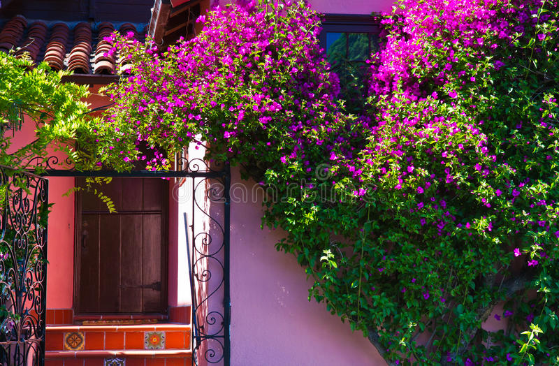 Download Colorful Luxury Home With Beautiful Entrance Stock Photo - Image of beautiful, flowers: 20829040