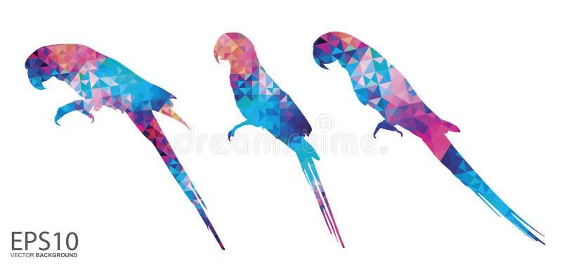 Colorful Macaw bird pattern background stock illustration