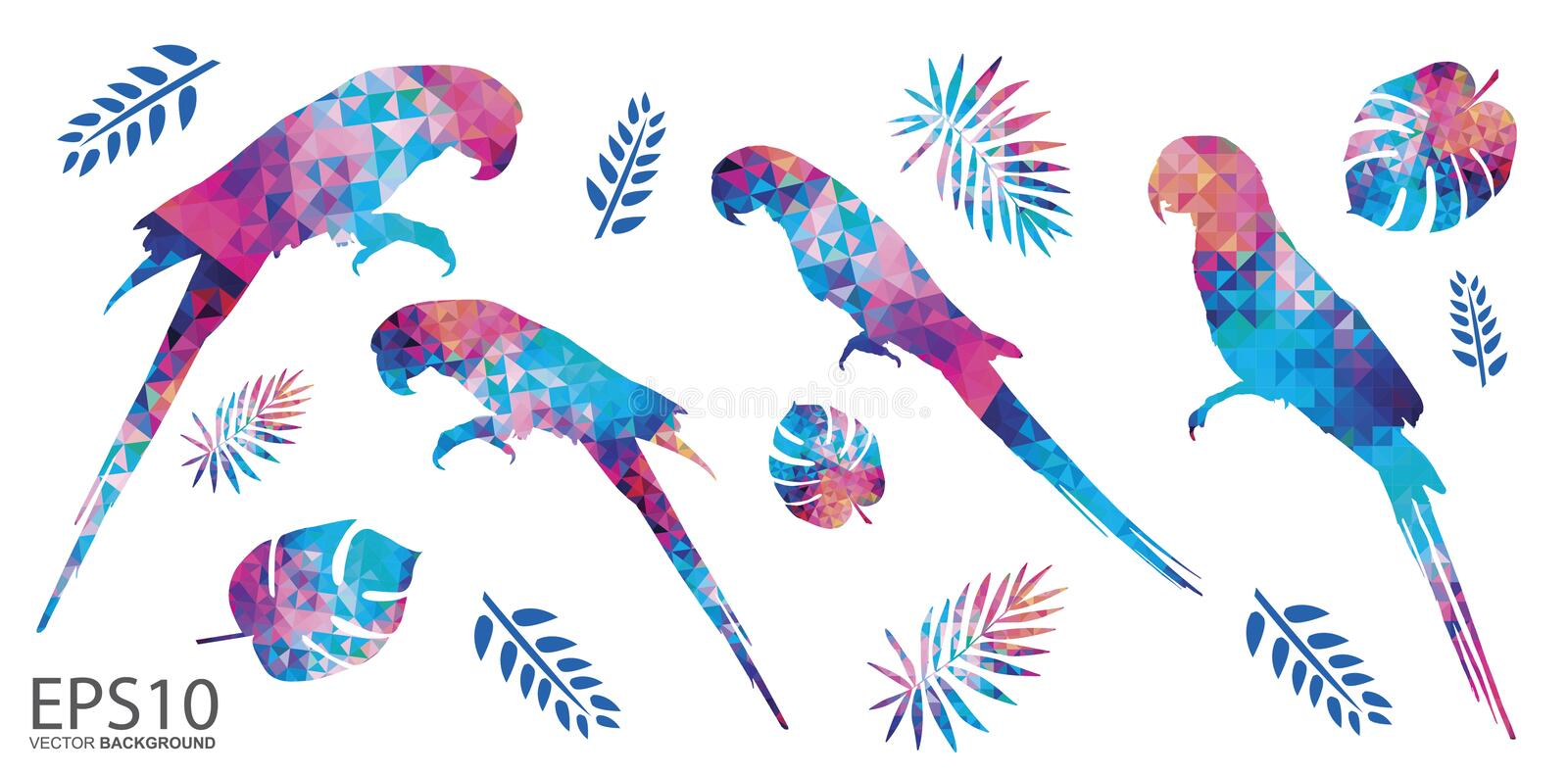 Colorful Macaw bird and tropical leaf pattern background vector illustration