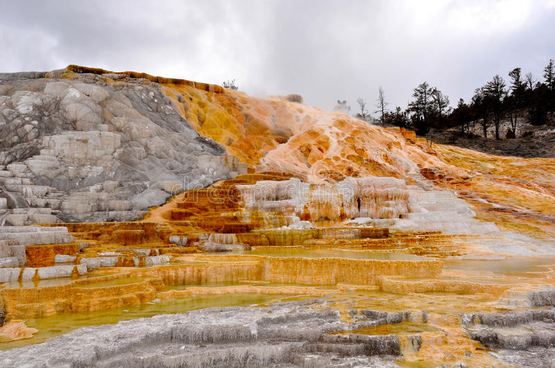 Download Colorful Mammoth stock image. Image of deposit, mineral - 25393355
