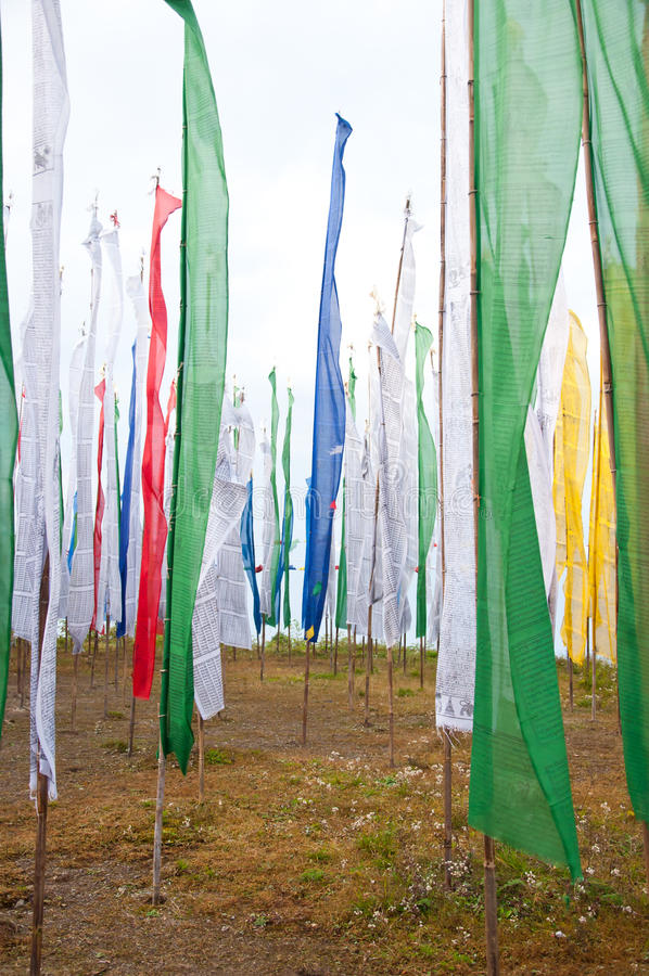 Free Colorful Mantra Flag Field In Darjeeling Royalty Free Stock Photography - 27219667