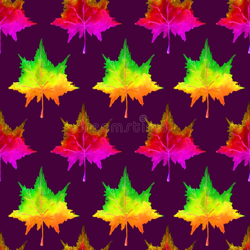 Colorful maple leaves, hand painted watercolor illustration, seamless pattern. On dark background royalty free illustration