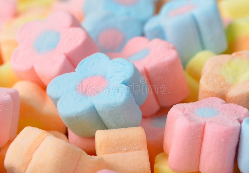 Colorful marshmallows candy for background uses.  stock photos