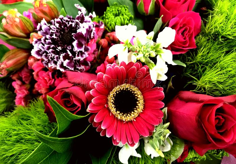 Colorful mixed spray, Floral Bouquet, many different colors. Picture makes a good background or banner royalty free stock photography