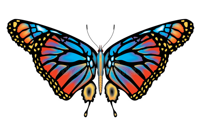 Colorful Monarch butterfly isolated stock illustration