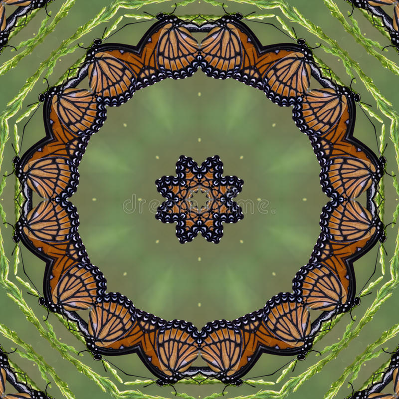 Colorful Monarch Butterfly Kaleidoscope royalty free stock images