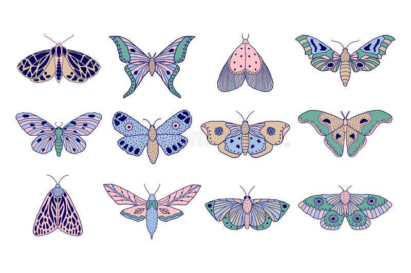 Colorful moths and butterflies. Set of hand drawn colorful moths and butterflies in doodle style on white background vector illustration