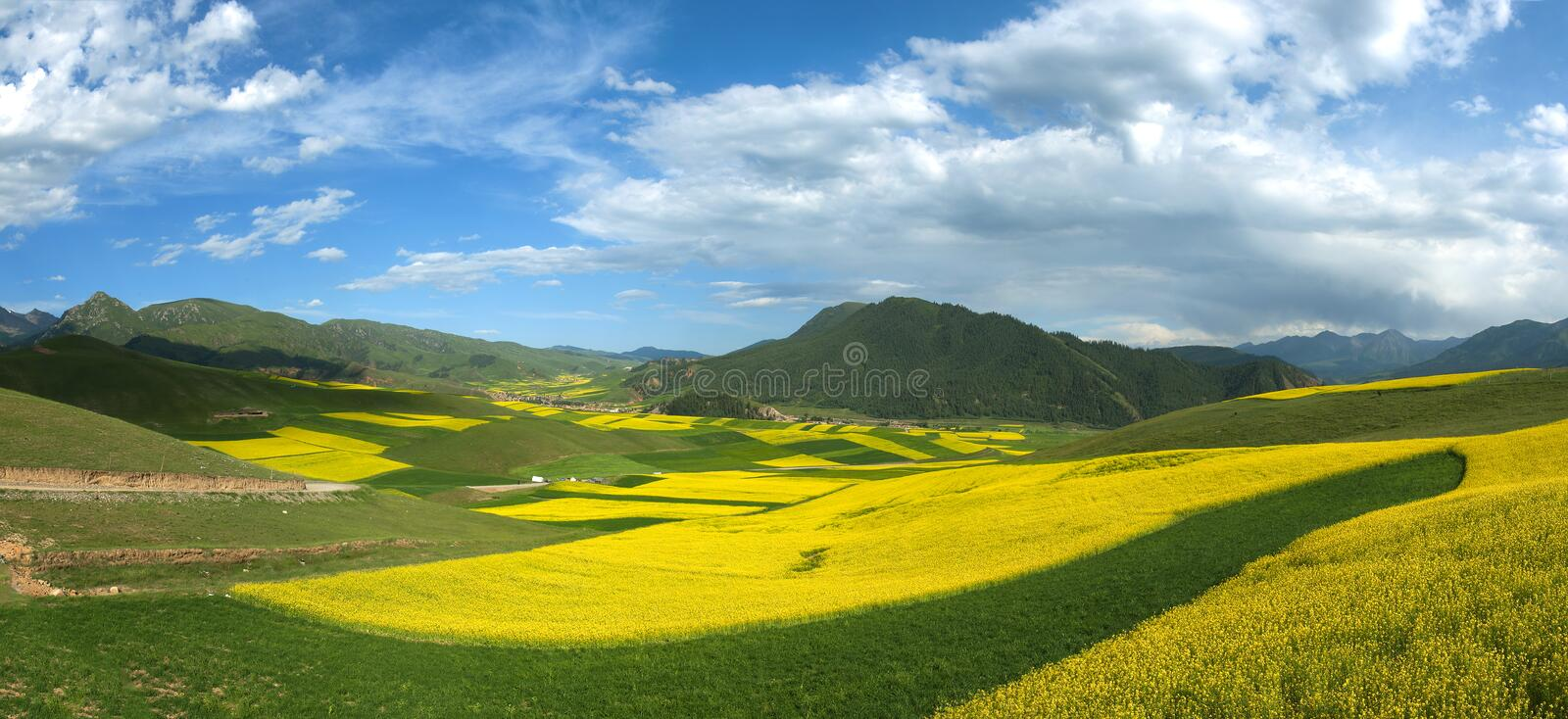 Colorful Mountain Landscape royalty free stock image