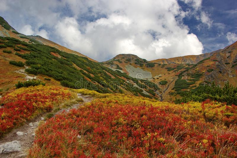 Colorful mountain landscape, autumn day in Tatras, Slovakia royalty free stock image