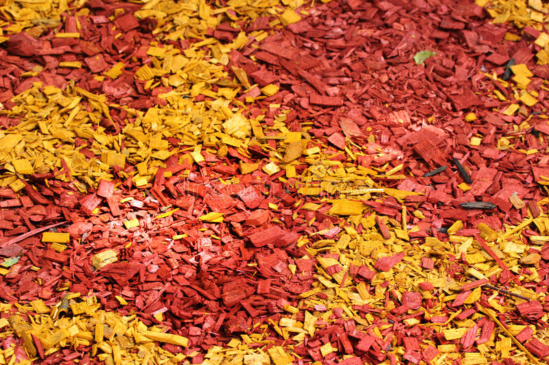 Colorful mulch around a tree.  royalty free stock image