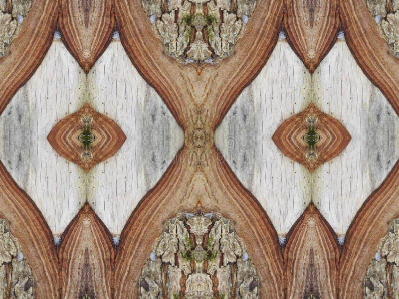 Tree trunk and bark abstract stock photos