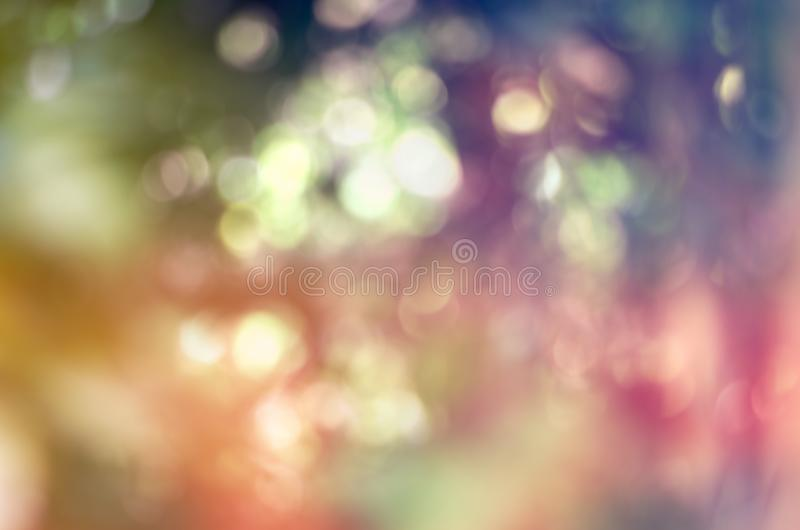 Colorful nature jungle or forest abstract blur for design background & texture royalty free stock images