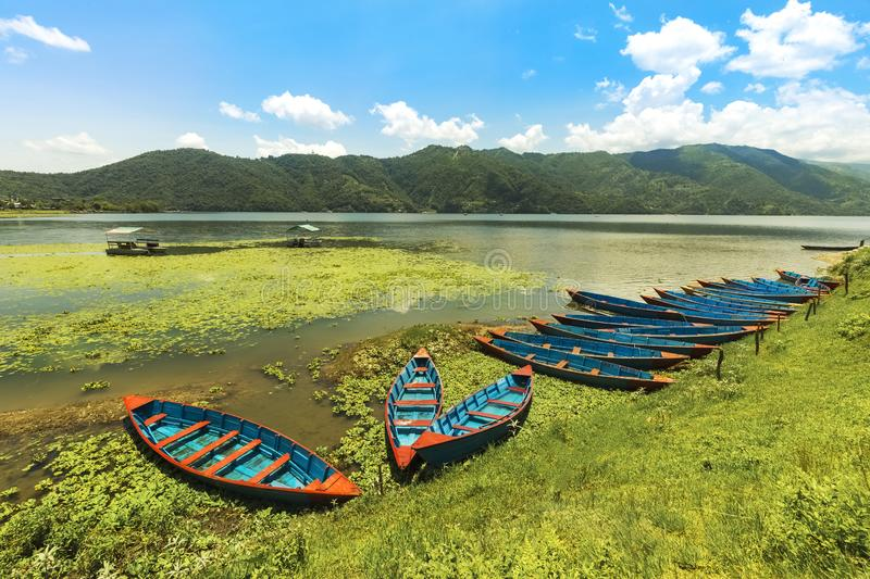 Colorful Nepal Row Boats parked in Phewa Lake a sunny day. Pokhara Nepal royalty free stock photography
