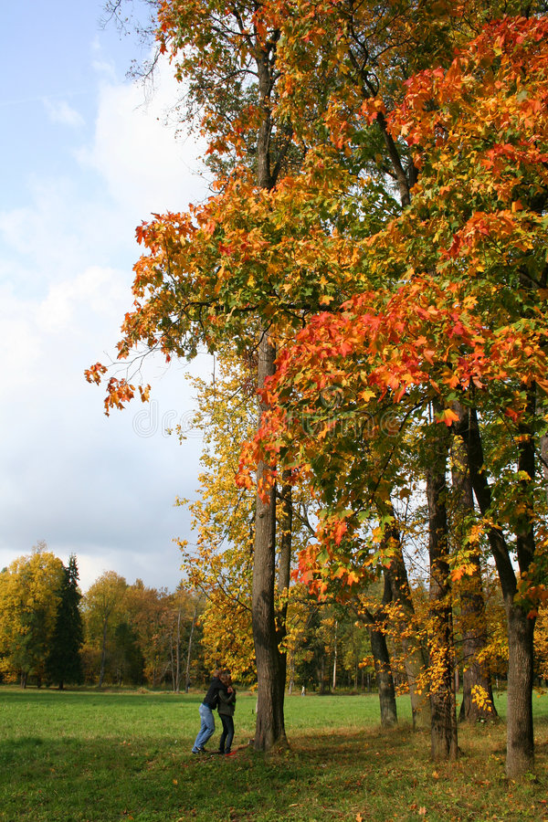 Colorful old autumn park royalty free stock photo