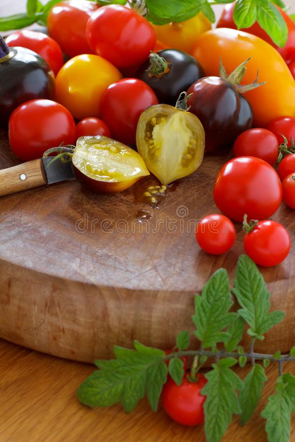 Colorful old tomato varieties stock photo