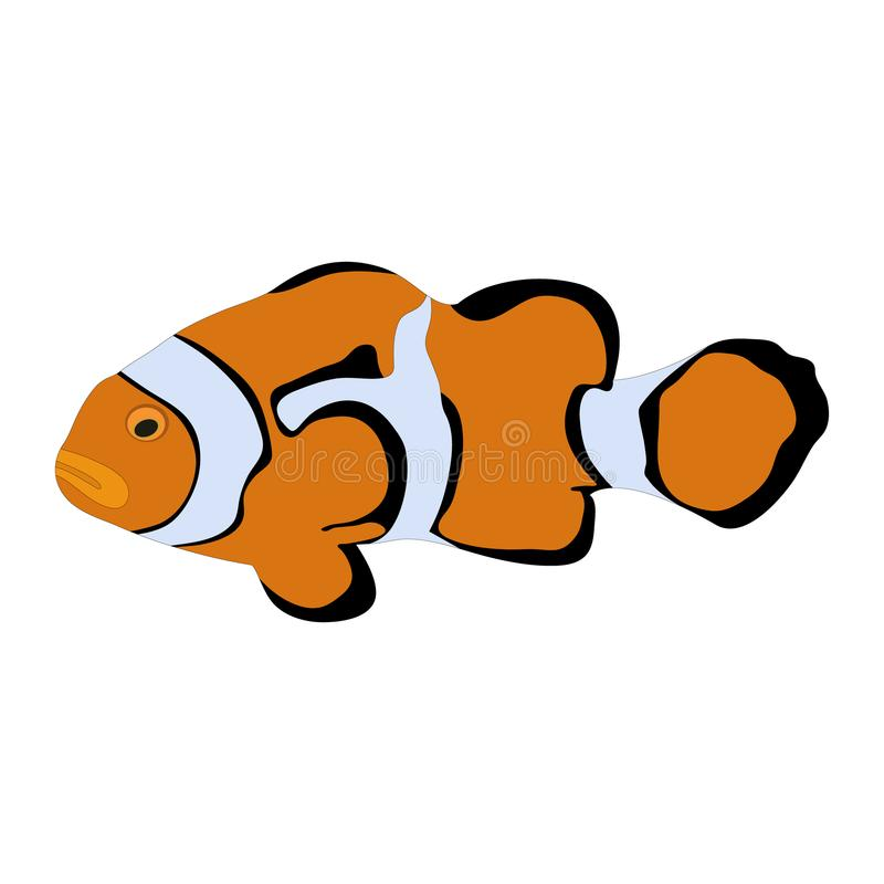 colorful orange clownfish clip art stock vector illustration of rh dreamstime com