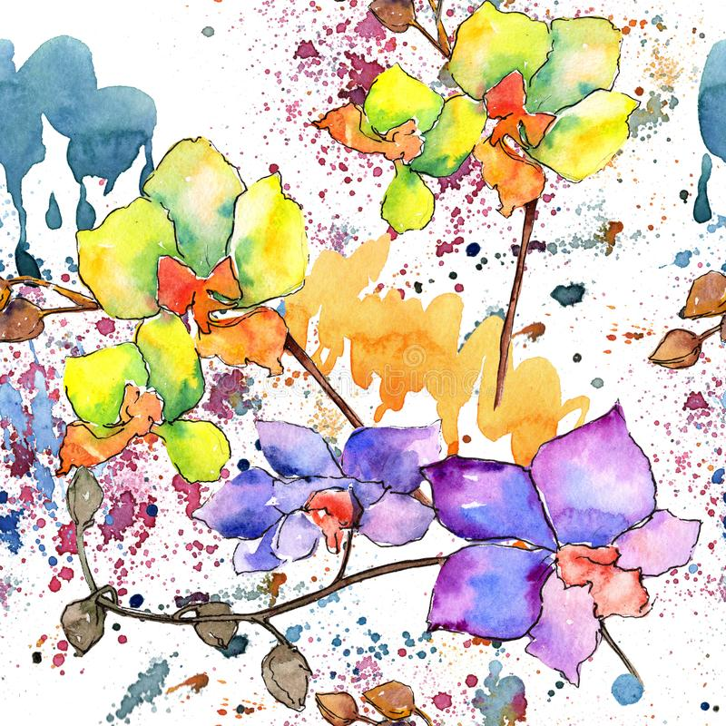 Colorful orchid. Floral botanical flower. Wild spring leaf wildflower pattern. Aquarelle wildflower for background, texture, wrapper pattern, frame or border stock illustration