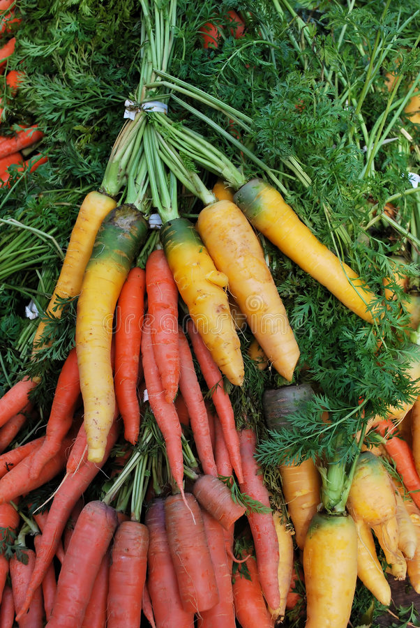 Colorful Organic Carrots stock images