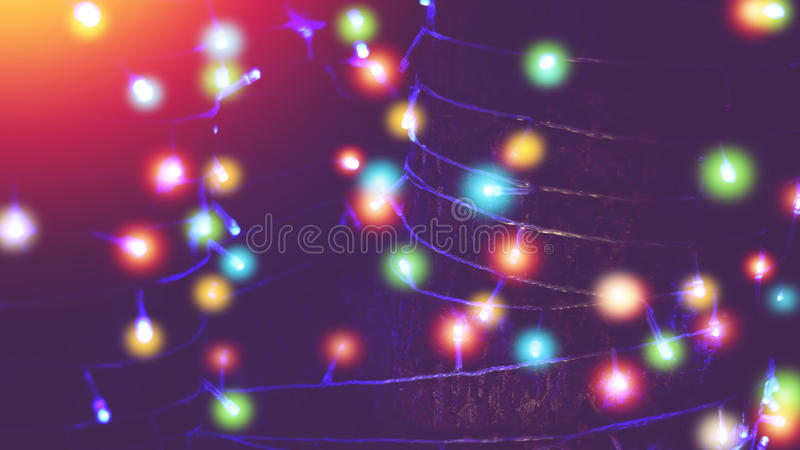 Colorful outdoor string lights wrapped around tree. In the garden stock images