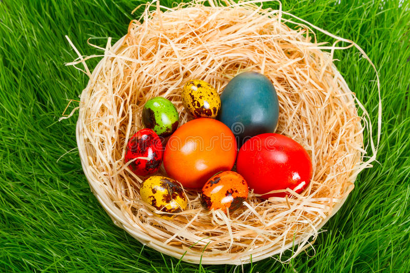 Download Colorful Painted Easter Eggs In Nest Stock Image - Image of decorated, green: 29982709