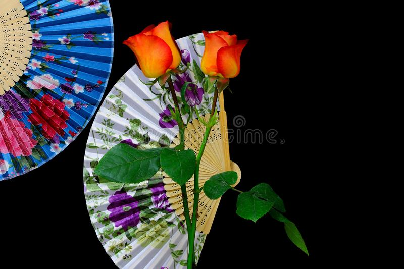 Pair of caribbean orange roses with oriental paper fans background. Colorful pair of caribbean orange roses with oriental paper fans background stock photography